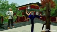 Sim kicking training dummy