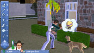 The Sims 2 Pets PSP Screenshot 01