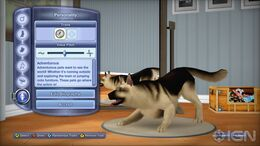 734px-TS3 Pets Dog CAS Xbox 360