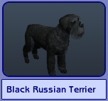 Black Russian Terrier (Sims 2)