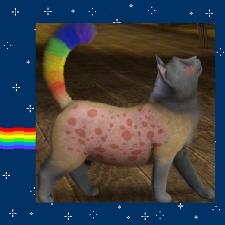 File:Nyan Cat the Pop Tart.jpg