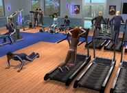 SIMS2UpcSCRNgymaction7