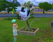 cowplant
