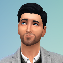 Karl Simerburg (The Sims 4)