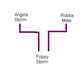 Storm Family
