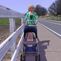 Una madre y su bebé en un cochecito.