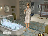 The Sims 2 Kitchen & Bath Interior Design Stuff 09