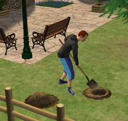 Sim digging for treasure Bon Voyage
