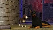 The Sims 3 Pets Screenshot 05