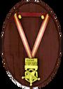 Медаль спасателя За стойкость