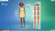Sims4castutorialimage