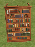 Ts2 mysterious looking bookcase