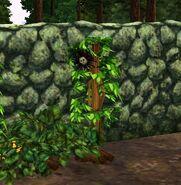 TS3 fully grown death flower bush