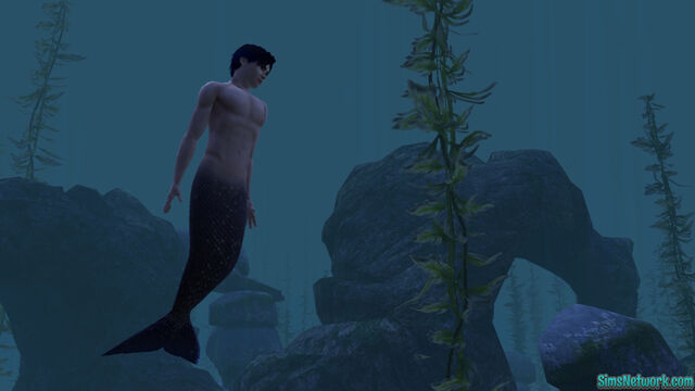 File:Mermansims.jpg