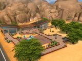 Woestijnbloempark