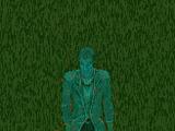 Зелёная Борода, призрак