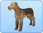 File:Breed-l03.png
