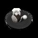 Ванильные ракушки и шоколадная икра (блюдо)