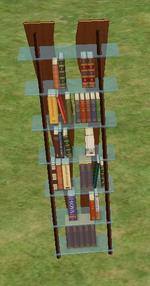 Ts2 Double Helix Designer Bookshelf