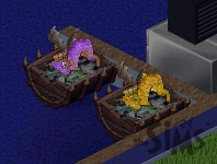 TS1_dragons_hatching.jpg