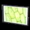 Картина «Расцвет дефектов»