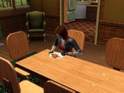 Eat sim