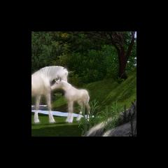 Un potro unicornio blanco siendo preparado por su padre.