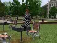 Tabby Chess