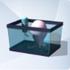 Calamar Espacial Vivo