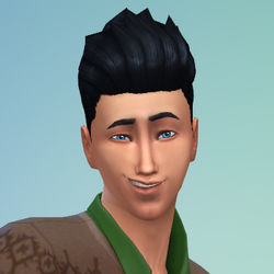 Lawrence Simerburg (The Sims 4)