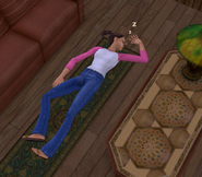 Ts2 sim passed out