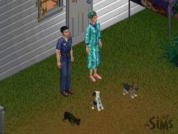 Boersma familie
