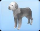 Breed-l54