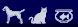 LS1Intereses Mascotas