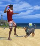 Les Sims 4 Chiens et Chats 08