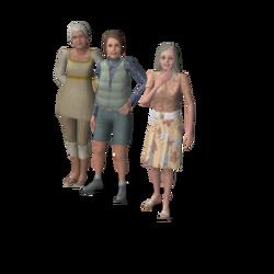 Gouden Dames huishouden
