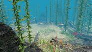 Скалистый риф глубины