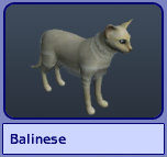 Balinese (Sims 2)