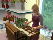 The Sims 2 Open For Business Screenshot 01