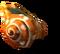 Обычная спиральная ракушка