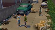 Les Sims 4 Ecologie 18
