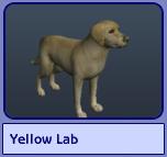 Yellow Lab (Sims 2)