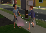 Evan and Lucas having a pillow fight