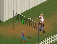 TS1 Sims playing volleyball