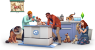 TS4Cats and Dogs Render 11