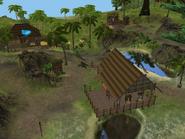 Village Market 2
