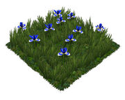 Gartenaccessoires-018-1-