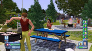 TS3 console picnic