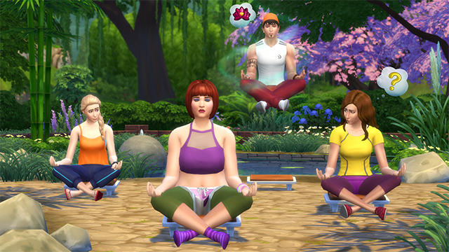 File:TS4Wellness.png