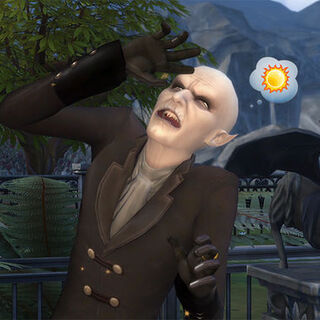 Vlad reaccionando a la luz solar.